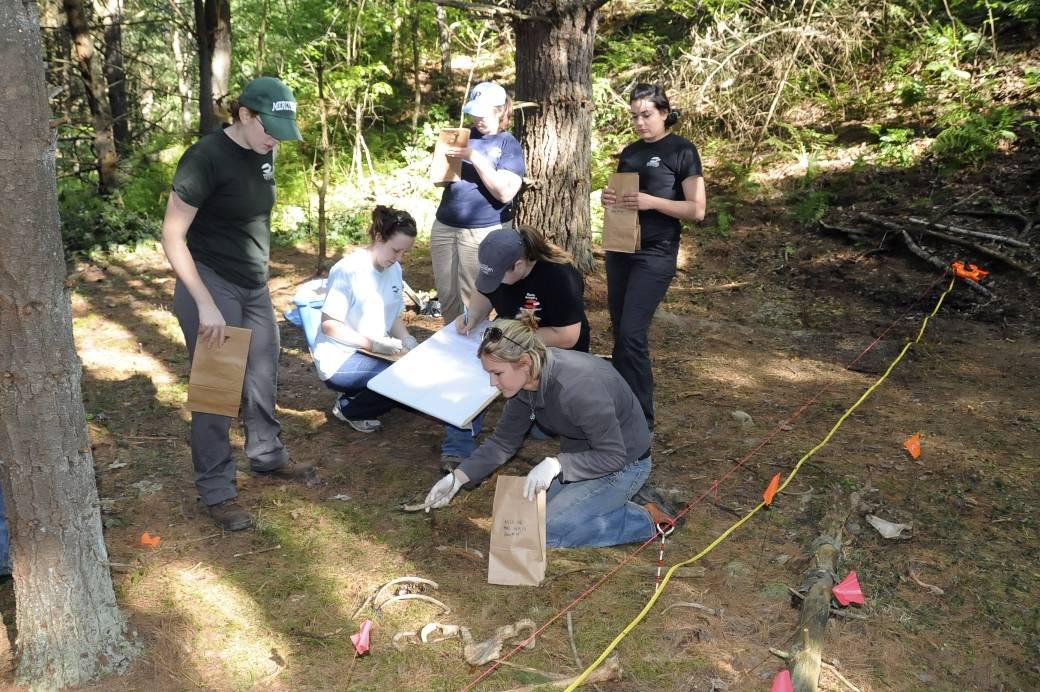 anthropology excavation